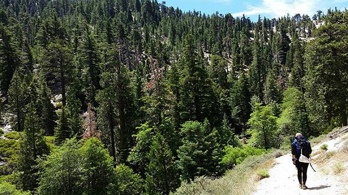 Burkhart Trail in the Angeles National Forest