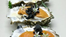 Oysters at Cliff's Edge